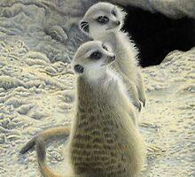 Meerkat Two by Atarial