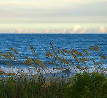 Peaceful Serene Beach by ThinkPics