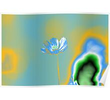 Pop Art Blue Cosmos Flower Posters Poster