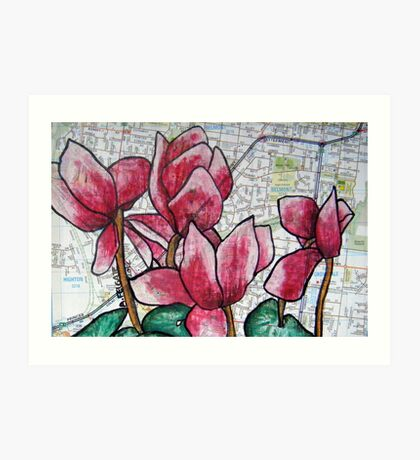 Cyclamen in the Suburbs Art Print