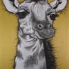 """Baby Giraffe"" by Sally Ford"