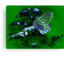 Beautiful Butterfly on flower Canvas Print