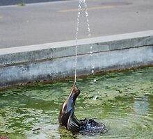 Otter fountain by santoshputhran