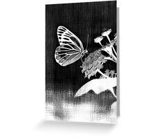 Vinatge Butterfly on flower - Black and White Greeting Card