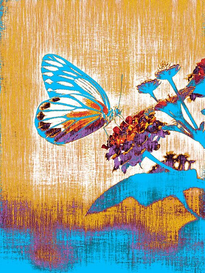 Vintage Butterfly on flower  by Nhan Ngo