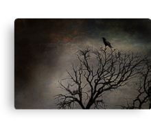 Black Bird Fly Canvas Print