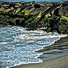 Ocean City, MD by Robin Lee