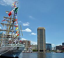 Baltimore Sailabration by Robin Lee