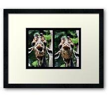 Conversing with a Giraffe  Framed Print