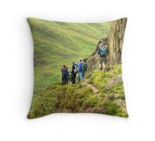 A Walk In The Park...By Side Pike Throw Pillow