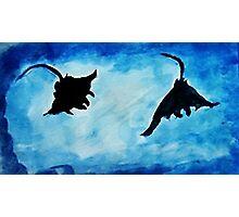 Giant Manta Rays, watercolor Photographic Print