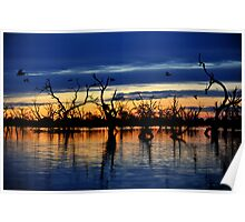 Reflections of the Day, Menindee Lakes, NSW Poster
