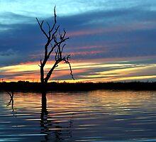 On Still Waters, Menindee lakes, NSW by Matt Harvey
