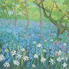 Bluebells at Hardcastle Crags by Susan Duffey