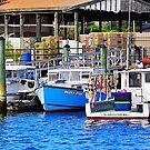 Gloucester Bay by joevoz