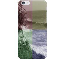 Tinted Window iPhone Case/Skin