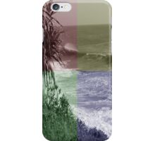 Tinted Window iPhone Case/Skin