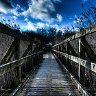Studland Bridge by William Rottenburg