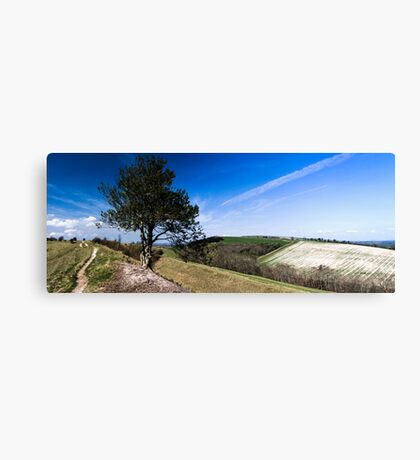 Hod Hill Canvas Print