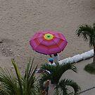 Umbrella for Sale - Sombrilla a la Venta by PtoVallartaMex