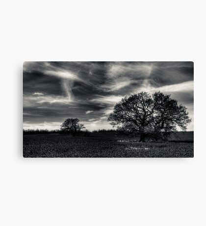Ghost Sky Canvas Print