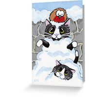Avalanche! Greeting Card
