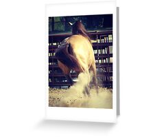 Buckskin Kicks Up Dust Greeting Card