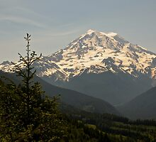 Mt Rainier from Evan's Creek by BH Neely