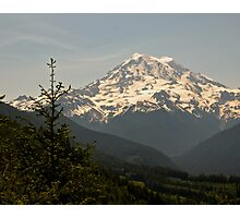 Mt Rainier from Evan's Creek Photographic Print