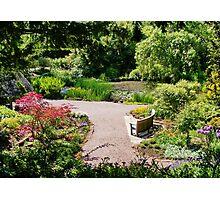 Ness Gardens Photographic Print