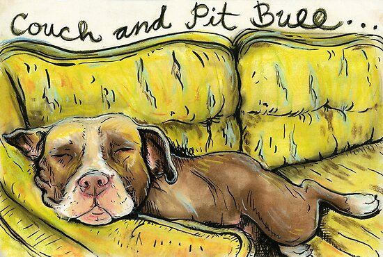 Couch and Pit Bull by Acey Thompson