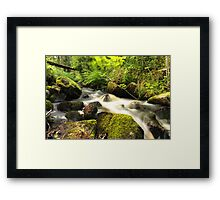 The unidentified stream in Hillerstorp I Framed Print