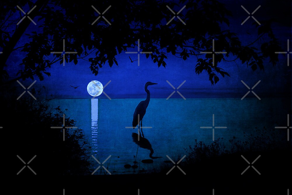 Moonlight on the Water by Megan Noble