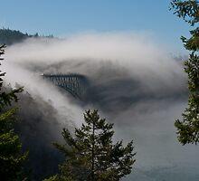 Foggy Pass by Jim Adams