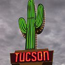 Welcome to Tucson by Richard G Witham