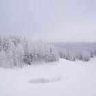 Winter in Golubino by MrTaskaev