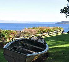 Lawn Boat by Jim Adams