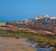 Morocco. The Walls of Essaouira. by vadim19