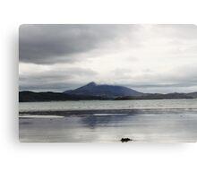 Donegal Beach Metal Print