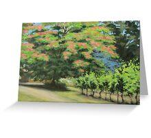 Vineyard Mimosa Greeting Card