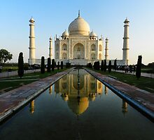 the taj by Mitchell Koller