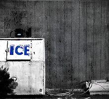 Ice by Dana Horne