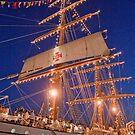 """Sagres"" Tall Ship. by terezadelpilar ~ art & architecture"