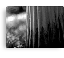 left to its own devices, the garden simply got on with it. Canvas Print