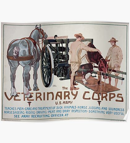 The Veterinary Corps US Army teaches men care and treatment of sick animals horse judging and soundness horseshoeing riding driving meat and dairy inspection something very useful 003 Poster