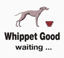 Whippet Good waiting... by philbotic