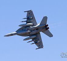 RAAF F/A18F Super Hornet (Rhino) 2 by Nigel Donald