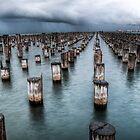 Princes Pier by Robyn Meyer
