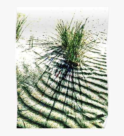 Sand Grain and Grass Poster