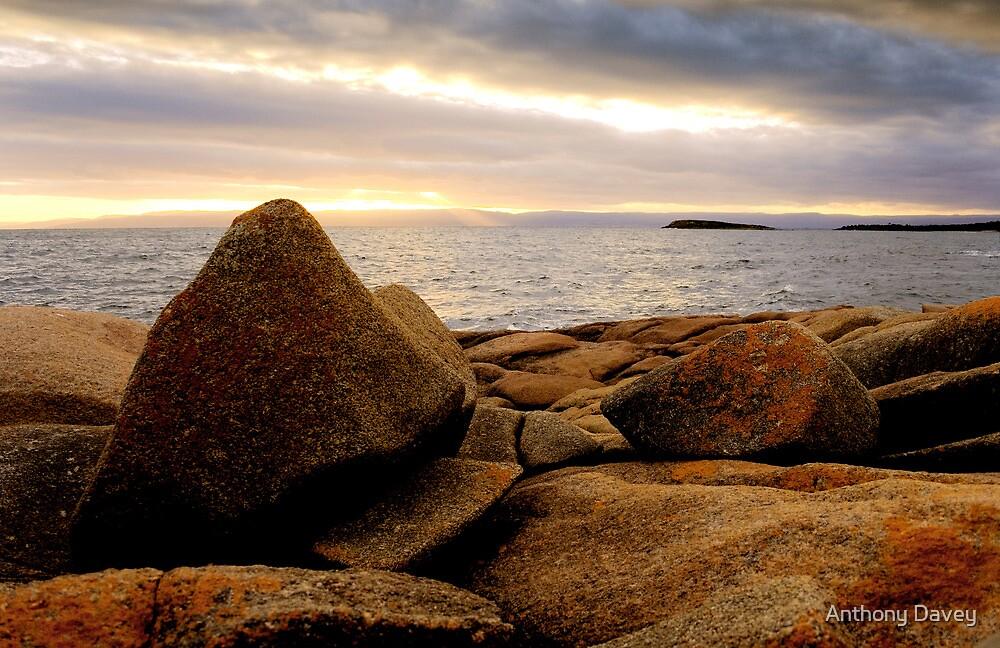 Seaside Serenity by Anthony Davey